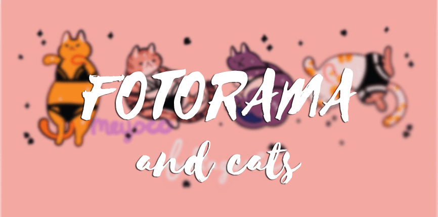 Фоторама и кошки