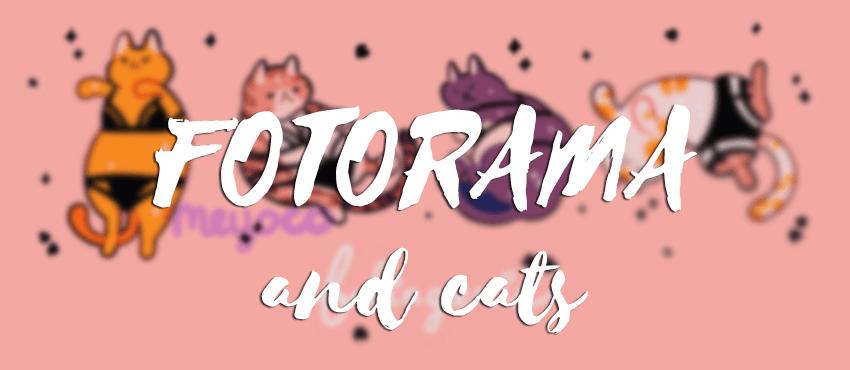 Fotorama - адаптивная jQuery галерея, установка и настройка